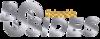 Thumb 100 logo2160x1080  1  copy