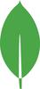 Thumb 100 thumb 100 thumb 100 mongodb leaf 1c